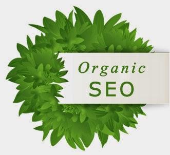 organic seo Tìm hiểu vai trò của tìm kiếm tự nhiên khi làm SEO  Facebook Ninja
